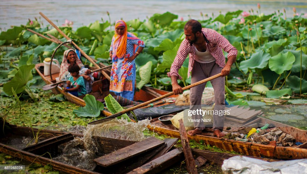 Fishermen take out water from their submerged boat near the floating lotus garden in Dal lake on August 22, 2017 in Srinagar, the summer capital of Indian administered Kashmir, India. Lotus flowers are in full bloom in ecologically rich Dal Lake. The flowers and leaves rise on their slender stalks three or four feet from the surface of the lake in the months of July and August. Its root, Nadru or Nelumbo nucifera, is a savoured delicacy of Kashmir people and fetches over $7,920,164 (50 Crore INR) annually for vegetable dealers.