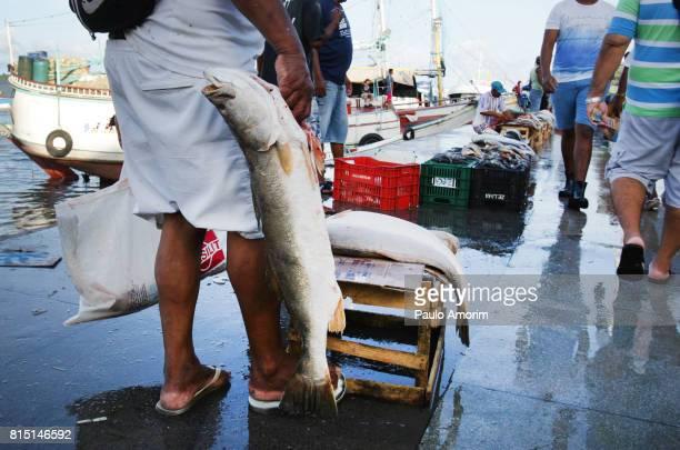 Fishermen  Working at Ver-o-Peso Market in Belém,Brazil