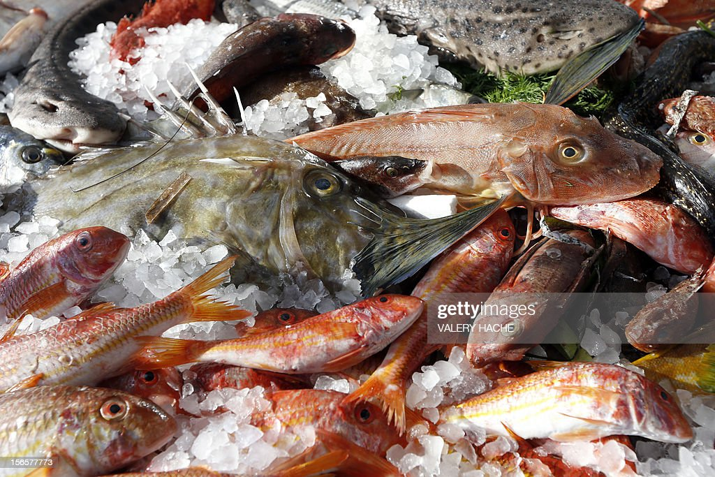 Fishes are displayed during an ephemeral market as part of the festivities marking the 25th anniversary of French chef Alain Ducasse's restaurant 'Le Louis XV', on November 17, 2012 in Monaco. AFP PHOTO / VALERY HACHE