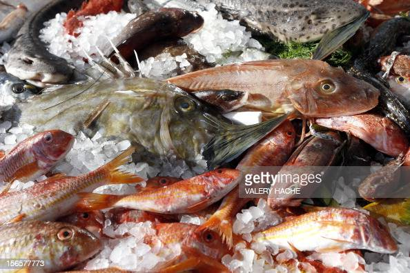Fishes are displayed during an ephemeral market as part of the festivities marking the 25th anniversary of French chef Alain Ducasse's restaurant 'Le...