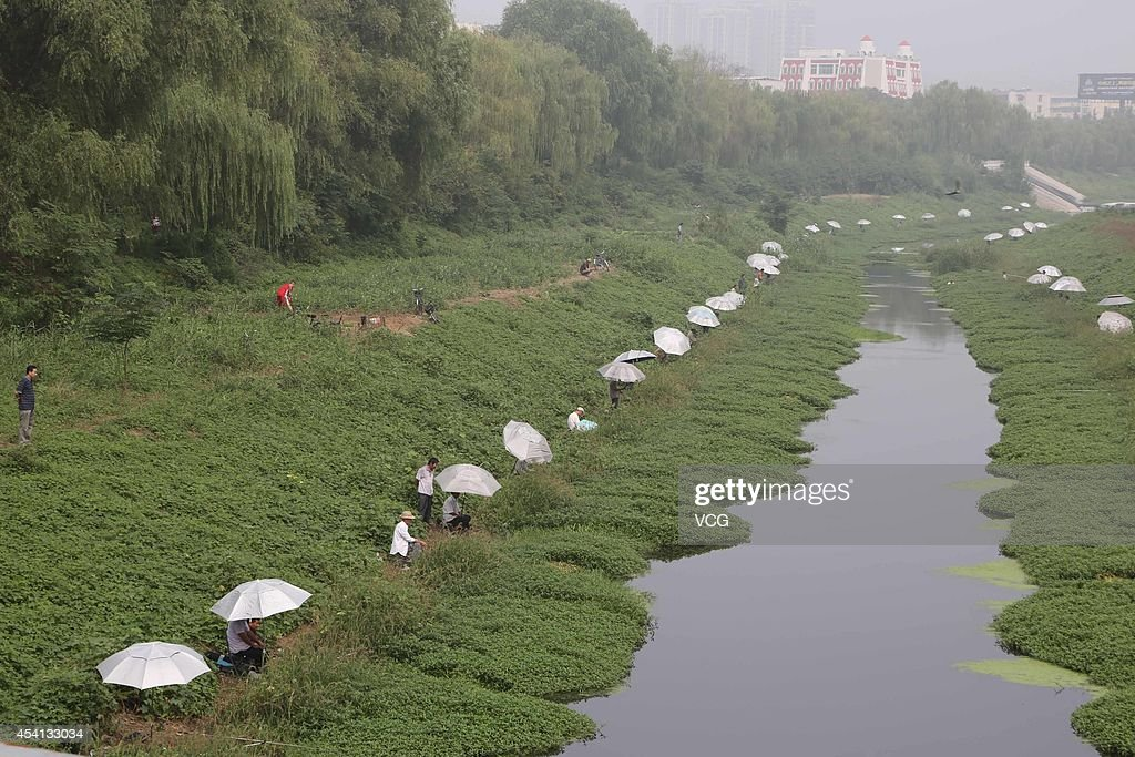 Fishing amateurs cast fishing at Qingni river on August 24 2014 in Xuchang Henan Province of China