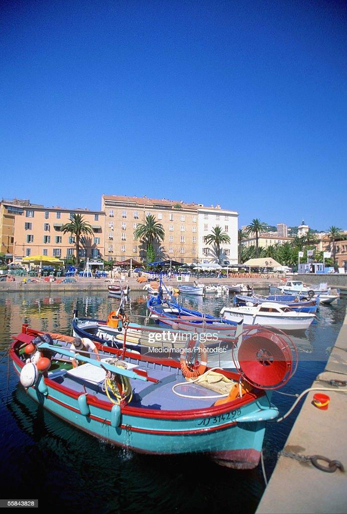 Fishing boats anchored at Ajaccio Harbor, Corsica, France : Stock Photo