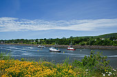 Fishing boats anchored on Annapolis River