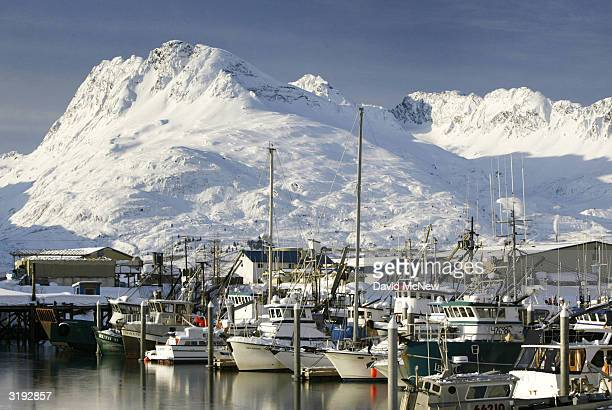 Fishing boats are moored in icy water at the small boat harbor on April 1 2004 in Valdez Alaska Fifteen years after the Exxon Valdez supertanker...