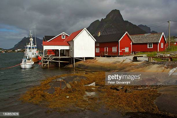 Fishing boats at colourful Rorbuer (fishing huts) in Reine, Lofoten, Norway