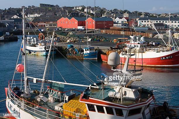 Fishing boats in harbour.