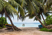 Fishing boats under palm trees on the coast of Anse Royale in Mahe, Seychelles
