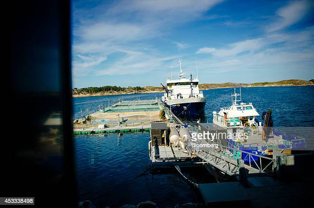 Fishing boats sit moored beside fish pens operated by Salmar ASA at the company's salmon farm on the island of Froya Norway on Thursday Aug 7 2014...