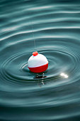 Fishing float on water, close-up