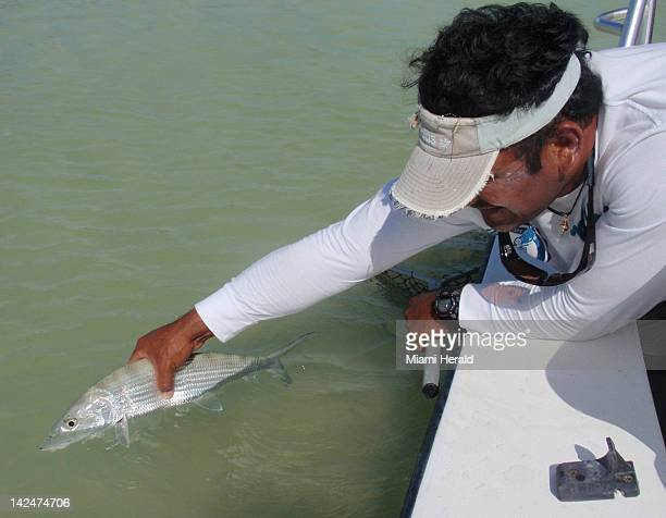 Fishing guide Jorge Luciano releases a bonefish caught in Boca Paila Lagoon in Mexico's southern Yucatan region