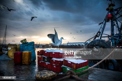 Fishing Industry: Bringing in the catch