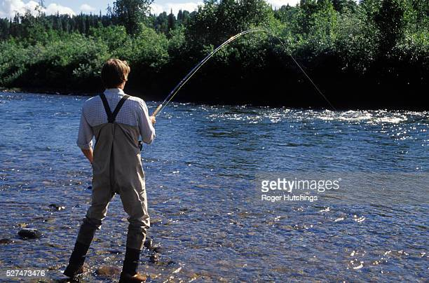 Fishing instuctor Simeon Hay playing a good rainbow trout caught on the fly on The Talachulitna River in Alaska