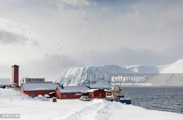Fishing Port of Honningsvag
