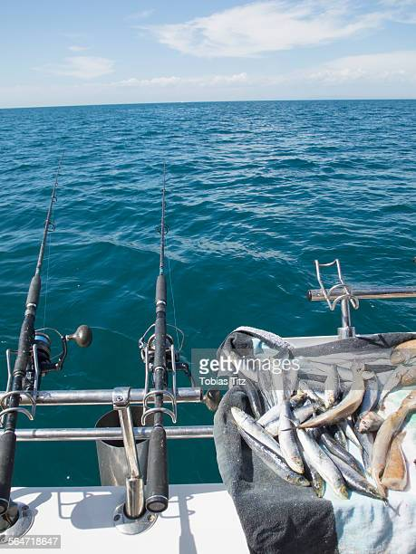 Fishing rods on boat