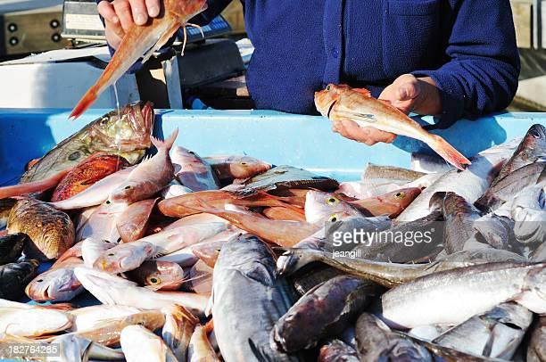 Le Fishmonger'dans le Vieux Port de Marseille