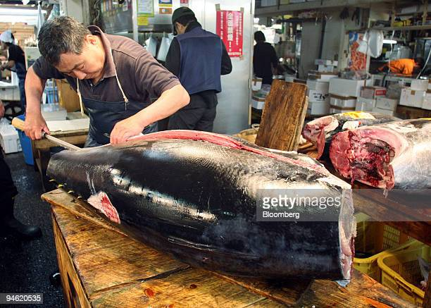A fishmonger cuts a tuna at a fish shop at the Tsukiji Fish Market in Tokyo Japan Monday June 5 2006 Wholesale prices for Japan's favorite fish have...