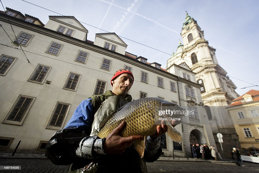 A fishmonger holds a carp at his stall on December 21, 2013 in Prague, Czech Republic. In the days before Christmas, fisherman from Southern Bohemia sell their live fish on street corners for use in the traditional Czech Christmas dishes of fried carp, potato salad and fish soup.