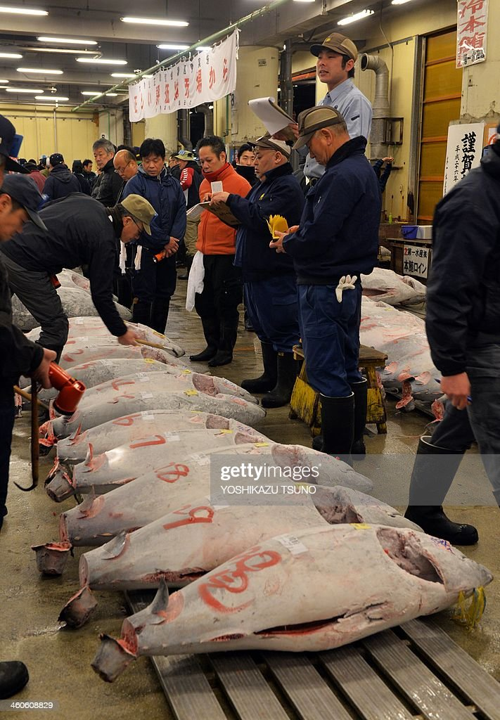 Fishmongers check frozen bluefin tuna on auction at the first trading of the new year at Tokyo's Tsukiji fish market on January 5, 2014. A bluefin tuna was on January 5 traded at 70,000 USD (7.36 million yen) at the wholesale market. AFP PHOTO / Yoshikazu TSUNO