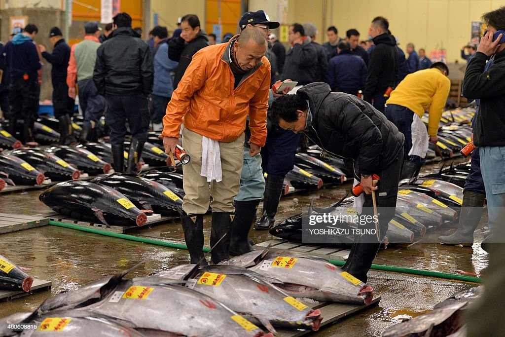 Fishmongers exchange bows next to bluefin tuna fish on display before the first trading of the new year at Tokyo's Tsukiji fish market on January 5, 2014. A 230kg bluefin tuna was traded at 7.36 million yen (70,000 USD) at the wholesale market. AFP PHOTO / Yoshikazu TSUNO