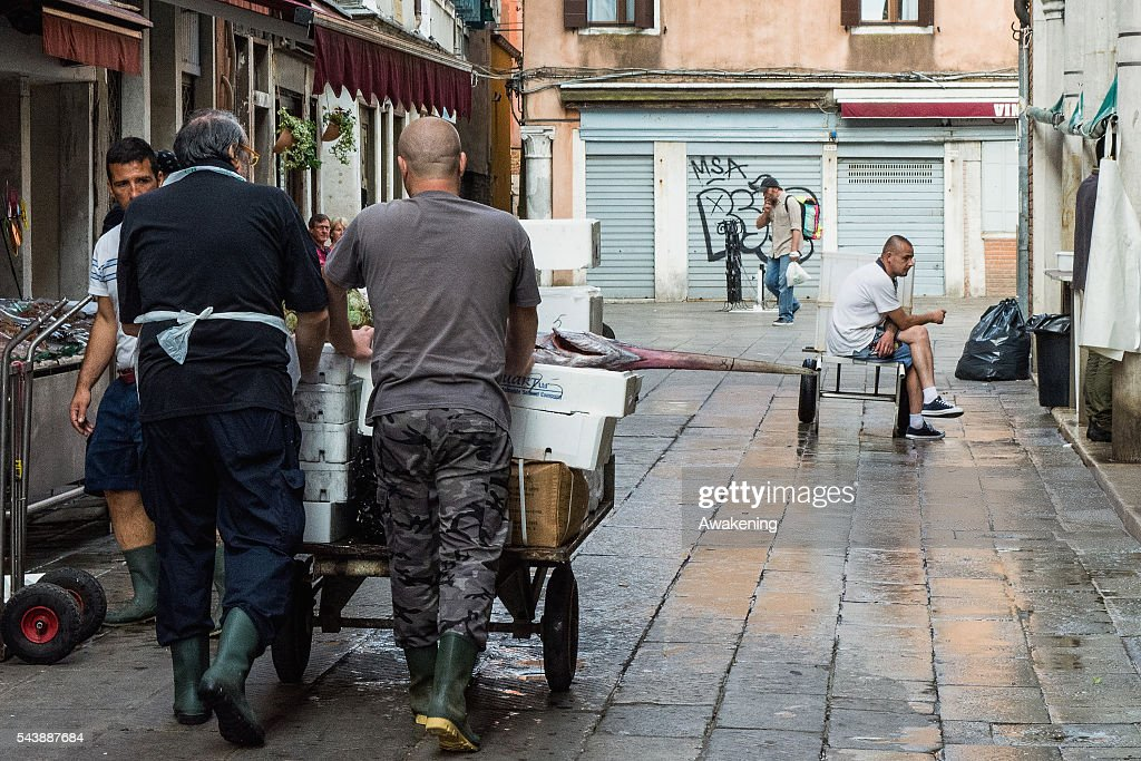 Fishmongers of the Venice Rialto Market bring the fish to their counter on June 30, 2016 in Venice, Italy.