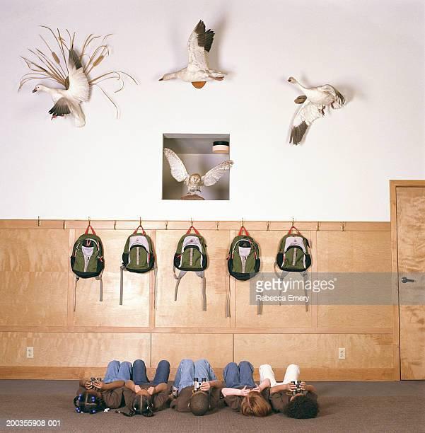 Five children (4-7) lying on floor, looking at stuffed birds on wall