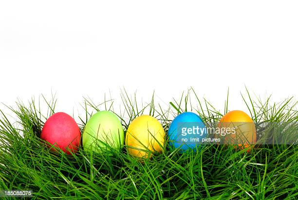 Five colorful Easter eggs lying in lush grass