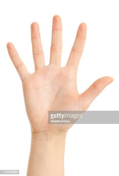 five finger von einer Frau hand
