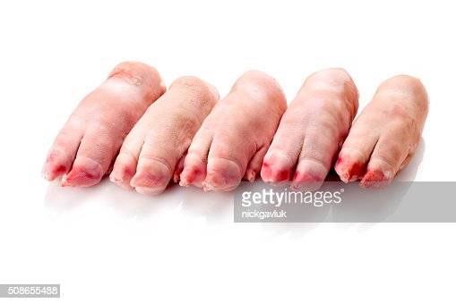 five legs of pork on white background : Stock Photo