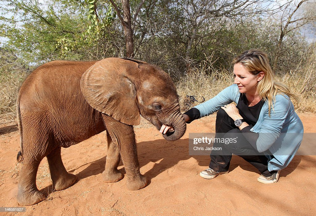 A five month old orphaned elephant called 'Tembo' plays with Lucy Fitzjohn at Tony Fitzjohn's Mkomazi rhino sanctuary on June 19, 2012 in Mkomazi, Tanzania. The Aspinall Foundation along with the Tusk Trust and the George Adamson Trust combined forces to stage a rare translocation of three captive born black rhino to Mkomazi National Park in Tanzania in order to rejuvenate numbers of the black rhino in the area. The three animals, Grumeti, Monduli and Zawadi were airlifted in a dedicated DHL Boeing 757 from Manston Airport in Kent direct to Kilimanjaro Int Airport in Tanzania. The rhino have been donated by Damian Aspinall, Chairman of The Aspinall Foundation, from their breeding group at Port Lympne Wild Animal Park in Kent. The reintroduction of endangered species to the wild to assist breeding programmes is a major focus of The Aspinall Foundation. Prince William as Patron of Tusk Trust and a dedicated campaigner against poaching visited the rhinos at Port Lympne ahead of their translocation and today released a speech via the BBC highlighting his dedication to the fight against the illegal trade of ivory.