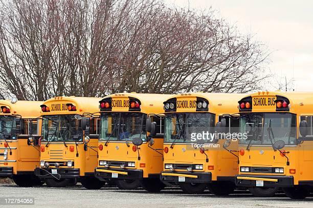 Five School Buses