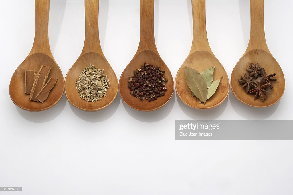 Five spoons filled with Chinese herbs : Stock Photo
