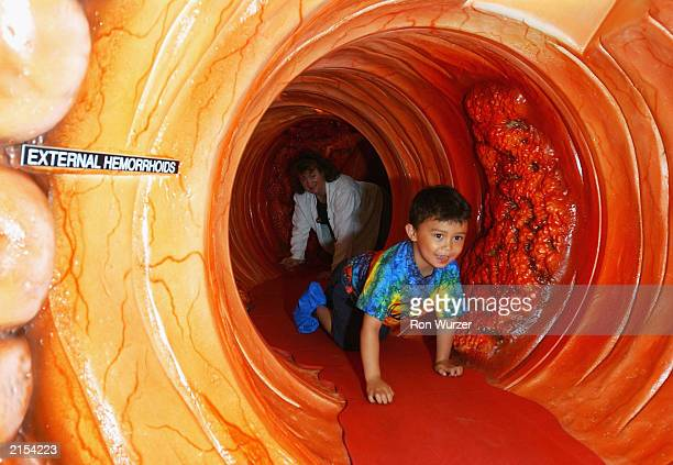 Five year old Michael Esteban and his mother Kari Esteban crawl through a 40foot long 4foot high replica of a human colon on July 11 2003 in Seattle...