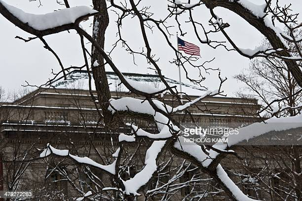 A US flag floats atop a building as snow covers branches in Lafayette Park across from the White House in WashingtonDC on March 17 2014 the morning...