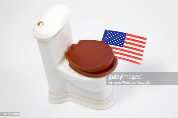 Flag inside the toilet