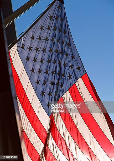 Flag of the Stars and Stripes