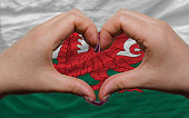 Gesture made by hands showing symbol of heart and love over national wales flag
