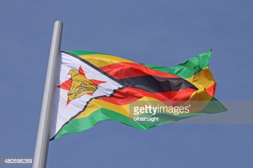 flag of Zimbabwe : Stock Photo
