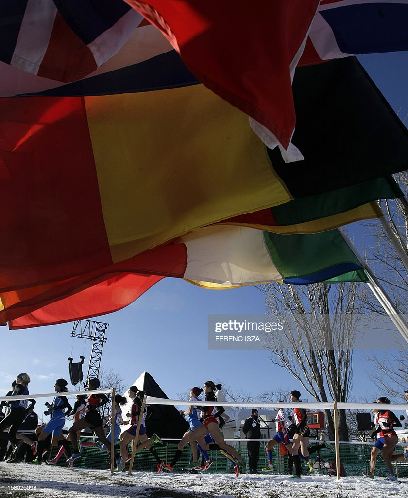 Flags are pictured as participants compete at the 19th European Women Cross Country Championships in a Skanzen of Szentendre near Budapest, Hungary on December 9, 2012. AFP PHOTO / FERENC ISZA