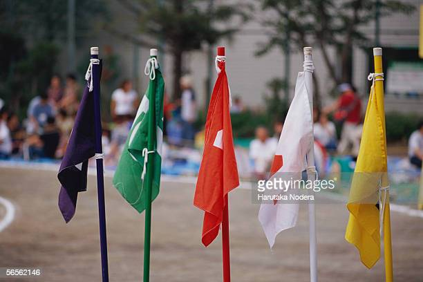 Flags at school sports day