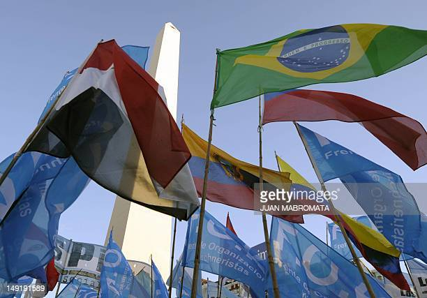 Flags of the Mercosur trading bloc member states are seen waving during a demonstration to support Venezuelan President Hugo Chavez at Plaza de la...