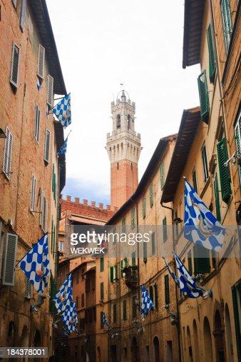 'Flags of the Onda (Wave) Contrada, Siena, Tuscany, Italy'