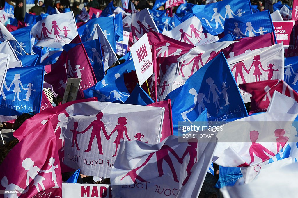 Flags reading 'Demo for all' are senn during a rally to protest against same-sex marriage on February 02, 2013 in Marseille, southern France, to denounce government plans to legalise same-sex marriage and adoption which have angered many Catholics and Muslims, France's two main faiths, as well as the right-wing opposition. France's National Assembly overwhelmingly approved today the first and most important article of a controversial law that will allow gay couples to get married and adopt children.