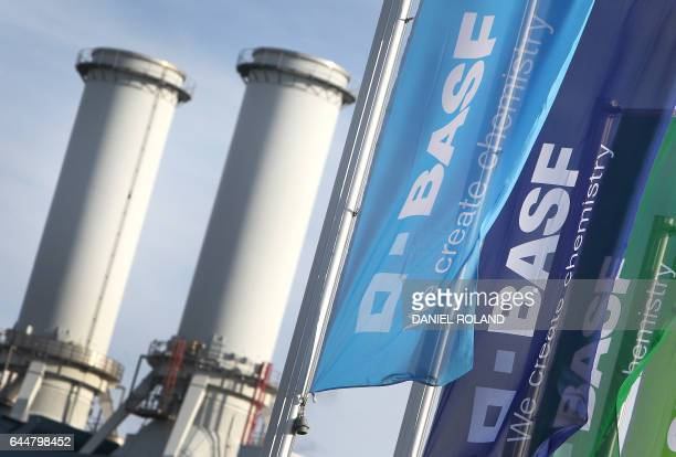 Flags with the logo of German chemicals company BASF flutter in front of the company's headquarters in Ludwigshafen western Germany on February 24...