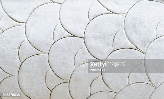 Flake of a dragon : Stock Photo
