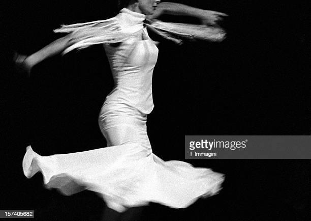 Flamenco flying