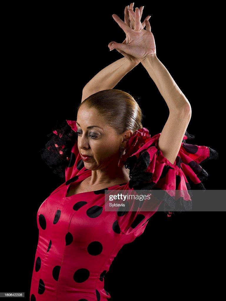Flamenco : Stock Photo