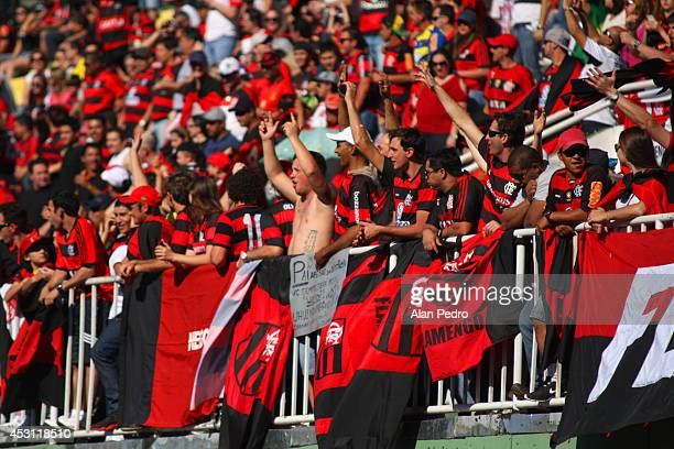 Flamengo fans cheer for their team during the match between Chapecoense and Flamengo for the Brazilian Series A 2014 at Arena Conda on August 3 2014...