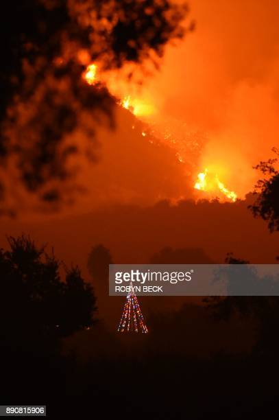 Flames from the Thomas Fire burn behind a decorated Christmas tree in the hills above Carpinteria California December 11 2017 The Thomas Fire in...