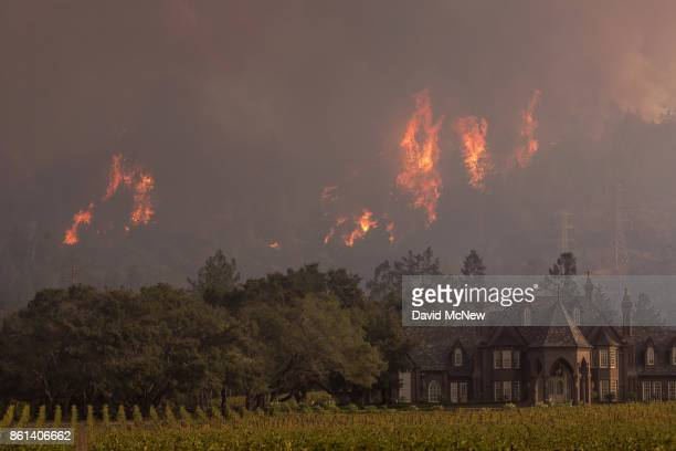 Flames rise behind Ledson Winery on October 14 2017 in Kenwood near Santa Rosa California At least 40 people are confirmed dead with hundreds still...