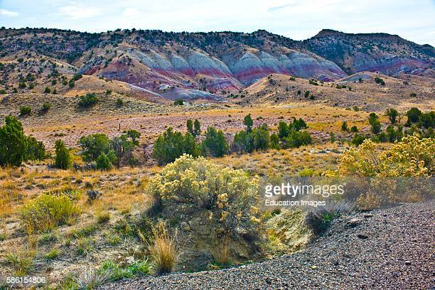 Flaming Gorge National Recreation Area North America USA Utah Scenic Vistas along US HWY 191